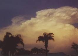 Tampa Sky